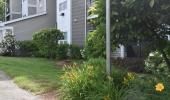 Landscape Management - Edgewood Luxury Apartments