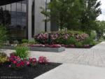 Landscape Management - Cross River Center